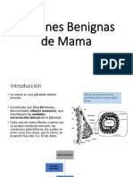 Lesiones Benignas MAMA.pdf
