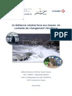 Résilience urbaine face aux risques