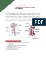 10-VASCULARISATION ARTERELLE DU CERVEAU.pdf