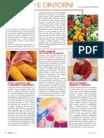 rivistedigitali_CN_2005_010_pag_028_029.pdf