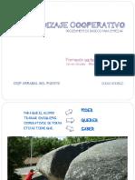 procedimientosbasicosapcooparrabaldelp-140921184523-phpapp01.pdf
