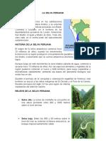 LA SELVA PERUANA