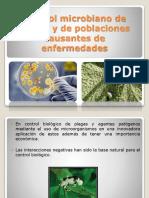 plaguicidamicrobiano-151126144950-lva1-app6891