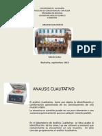 analisiscualitativo2-130928111440-phpapp01