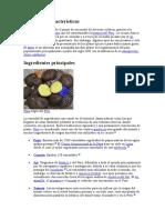 caracteristicas e ingredientes principales de la gastronomia peruana