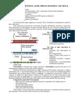 Transcription-inf