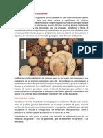 1590625969.pdf