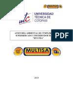 AUDITORIA-MULTISA-final-1.docx
