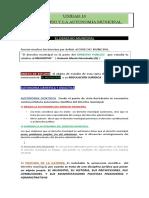 UNIDAD 14  EL DERECHO MUNICIPAL  15 HOJAS  (ENCUADRADO)  CORREGIDO   FINAL