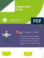 Cultura de Seguridad y riesgos críticos.pdf
