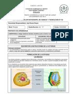 ACTIVIDAD ESCOLAR 2 CIENCIA 4°PRIM..pdf