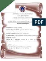 informe CALIDAD DE LA CANAL Y CALIDAD TECNOLÓGICA DE LA CARNE