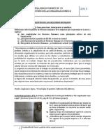 Teoría y gestión de las organizacionesII2015.docx