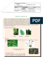 Guia de aprendizaje Reino vegetal