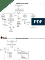 mapas conceptuales ciudadania