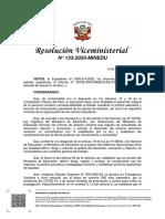 RVM_N__133-2020-MINEDU.pdf