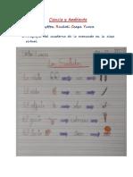 Ciencia y Ambiente -  Los Sentidos.