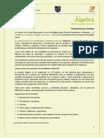 Orientaciones_Algebra_Fce_2-19