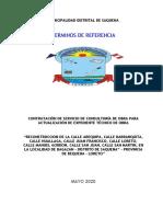 TDR_Actualización Exp. Tec._saquena