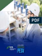 Modulo 02 Componente 08 - Plan Estrategico de Seguridad Vial Diagnostico.pdf