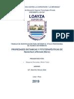 TESINA BERRO 01-10-19.pdf