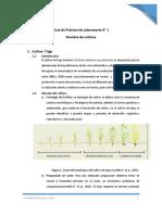 Guía de Siembra cultivos (1)