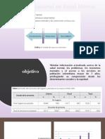 presentacion Encuesta Salud mental Colombia