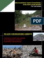Aula 1 Ipog - Impactos Do Desenvovimento Urbano