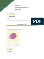 hematology3