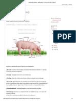 asderf.pdf