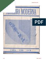438725913-SEBASTIAN-LAZO-ALGEBRA-MODERNA-PDF.pdf