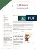 A Itinerante - Neiva_ (FF XII) A história completa, em texto, em português