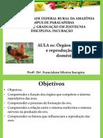 Aula 01 - Órgãos reprodutivos e reprodução de aves domésticas