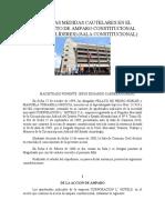 ACERCA DE LAS MEDIDAS CAUTELARES EN EL PROCEDIMIENTO DE AMPARO CONSTITUCIONAL