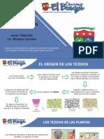 TEJIDOS VEGETALES PDF.pdf