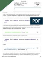 Informe de similitud - turnitin verificacion