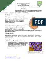 Guia de Ciencias Naturales 1. ciclo II 2P