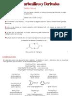 Clase 2. Acidos Carboxílicos