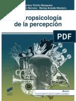 Neuropsicología de la percepción.pdf