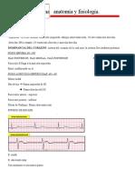 Electrocardiograma   anatomía y fisiología