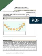 BIOLOGIA guia 10 grado.pdf