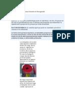 UNIDAD 2 - NORMAS DE BIOSEGURIDAD