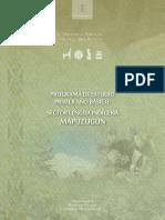 PROGRAMA DE ESTUDIO PRIEMER AÑO BASICO LENGUA INDIGENA.pdf