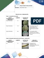 Practica Laboratorio Biología (2020)