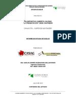 Informe Chinacota