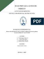 bosquejo experimental.pdf