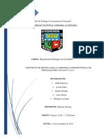 Estructura-PEC LPK.docx