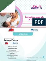 LACTANCIA MATERNA_ROTAFOLIO_JAUJA.pdf