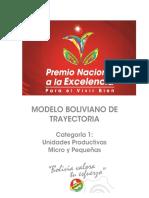 1-MODELO_BOLIVIANO_CATEGORÍA_1