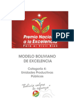 4-MODELO_BOLIVIANO_CATEGORÍA_4